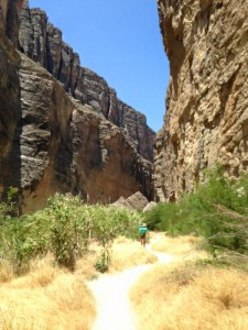 Big Bend National Park in July